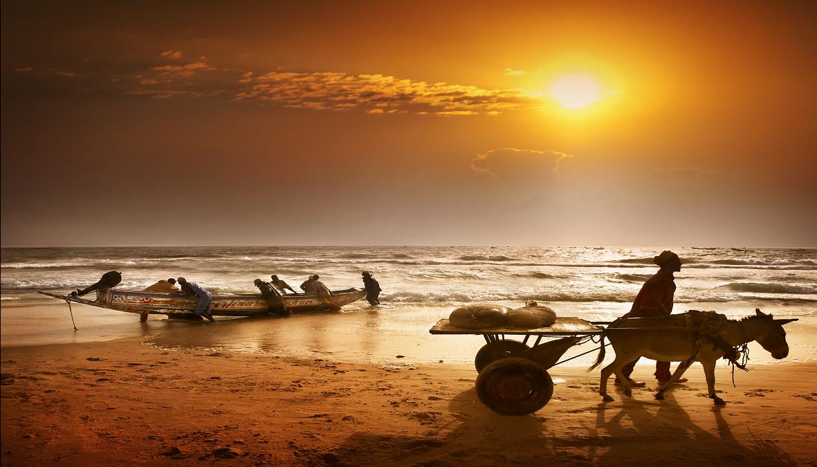 Mauritanie-plages-©Patrick-Galibert